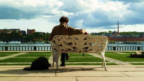 Stock Home 2011 on Behance #sweden #wallb #bench #stockholm #man #dog