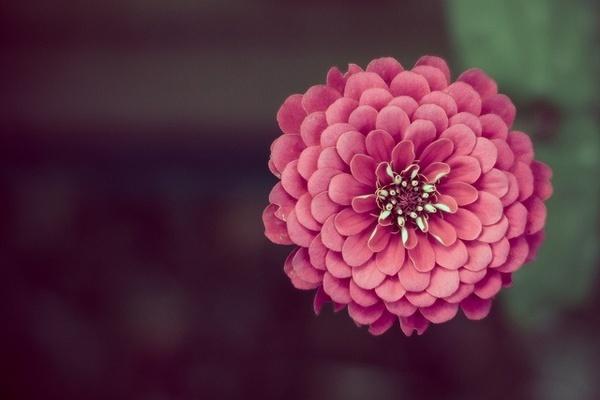 Photography Blog: Photography by Darren LoPrinzi #photography