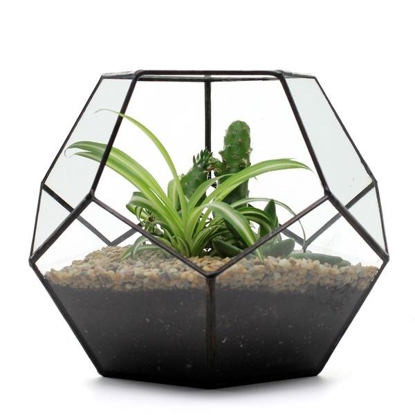 Dodecahedron Terrarium #design