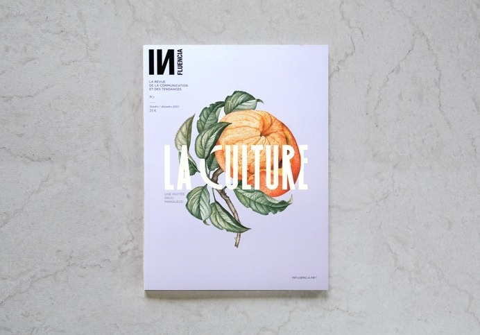 INFLUENCIA N°7 –Violaine & Jérémy #cover #grid #illustration #magazine