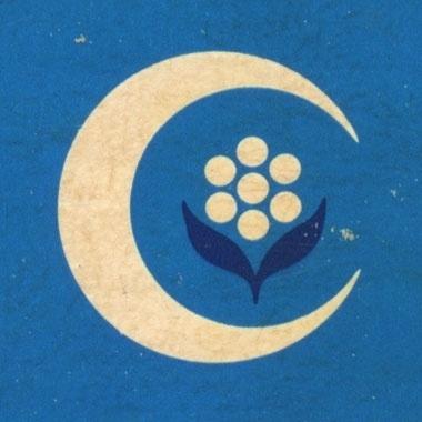 Draplin Design Co.: A Return To Junkin' #mark #sun #illustrated #illustration #vintage #flower #logo #blue