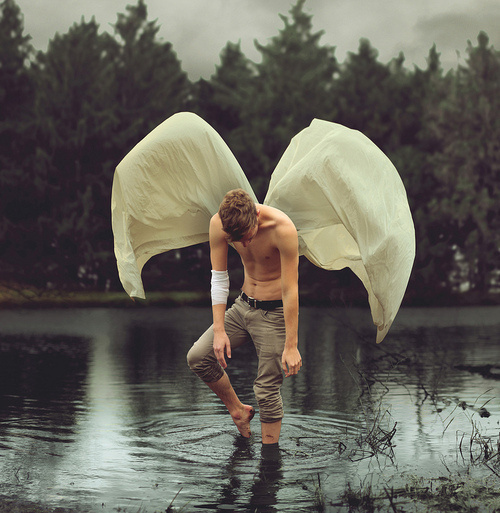 Frail Moth by Kyle Thompson #moth #kyle #photography #portrait #thompson