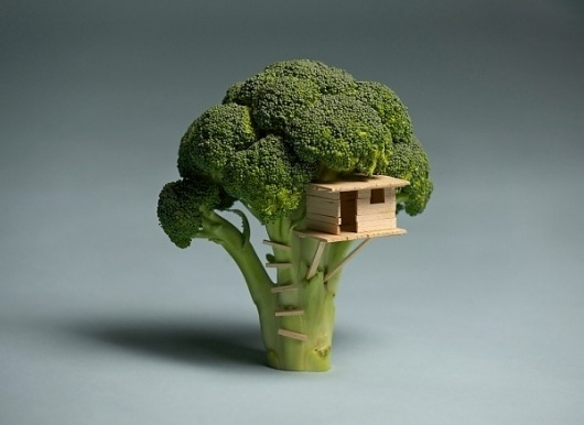 Broccoli House | Colossal #broccoli #house