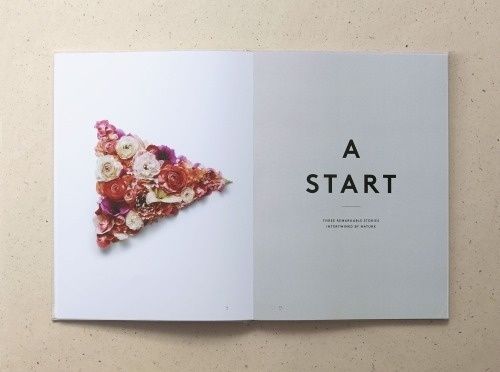sketches & things / julestardy.com #1 #new #book #spread #tardy #brand #hotels #york #layout #mother #jules