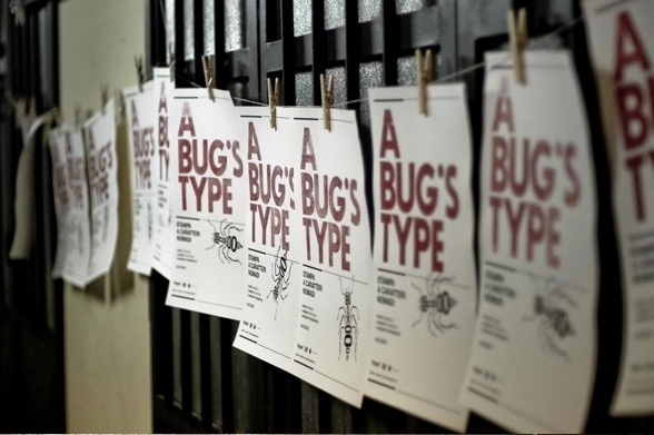 A Bug's Type - Poster Design on the Behance Network #poster
