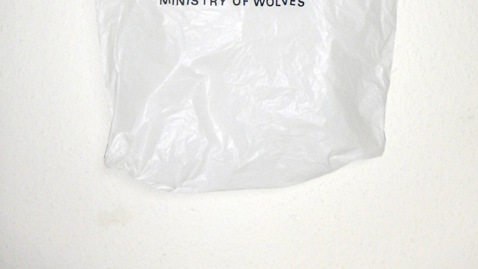 MINISTRY OF WOLVES #photography PHOTOGRAPHIE (C) [ catrin mackowski ]