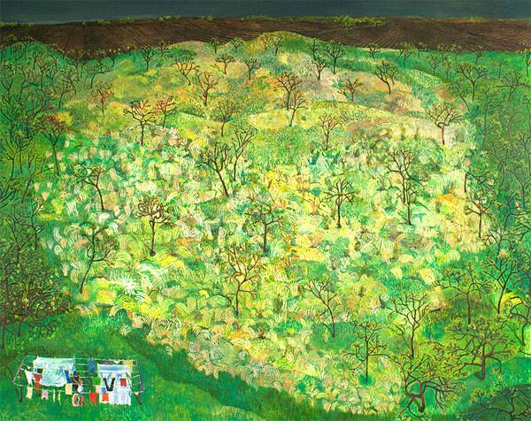 sophia heymans #green #nature #drawings