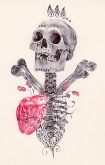 Paul Alexander Thornton #heart #thornton #illustration #alexander #art #flower #skull #paul