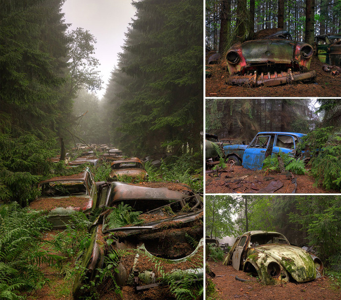 nature-reclaiming-abandoned-places-10 #cars #abandoned #photography