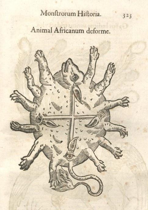 000333 #naturalism #aldrovandi #illustration #latin #ulisse #monster #drawing
