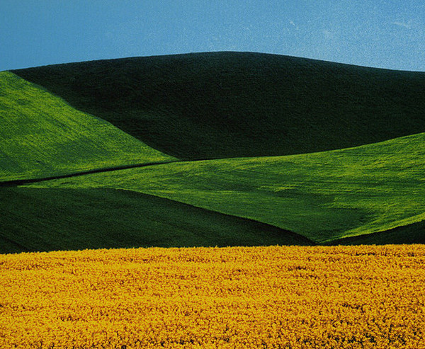 Abstract Colour Landscapes by Franco Fontana #inspiration #photography #landscape