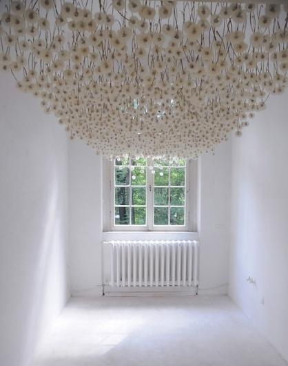 2,000 Suspended Dandelions by Regine Ramseier | Colossal #dandelions #installation