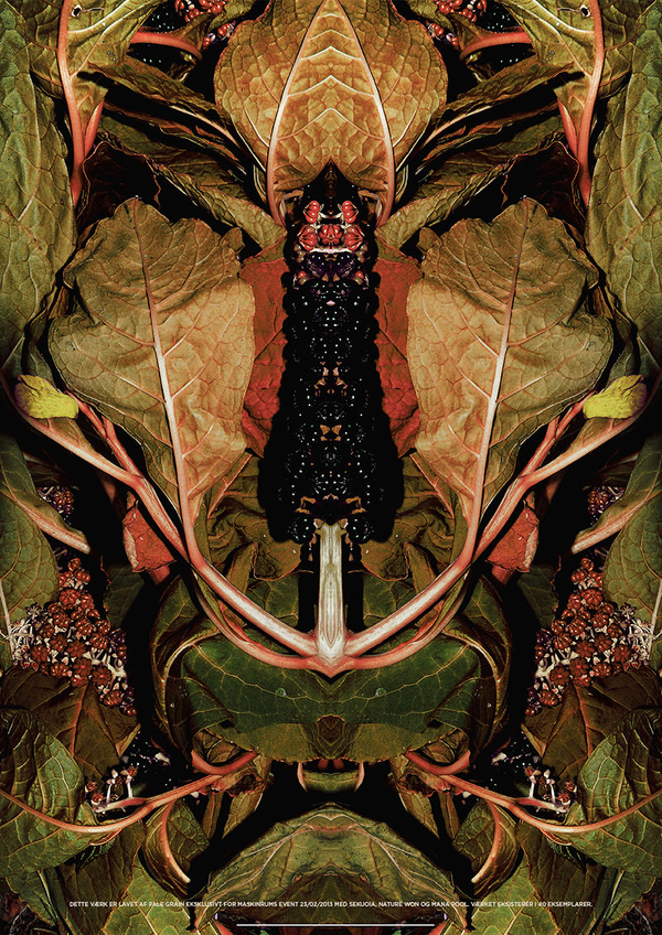 Limited Edition Print by Pale Grain #print #palegrain #nature #poster #death #life #plant