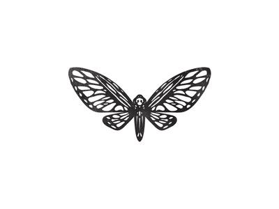 Death Moth #moth #animal #drawing #illustration