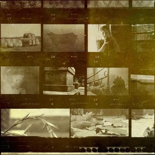 Inspiration | Jordan Lloyd #old #negative #retro #vintage #film #scan