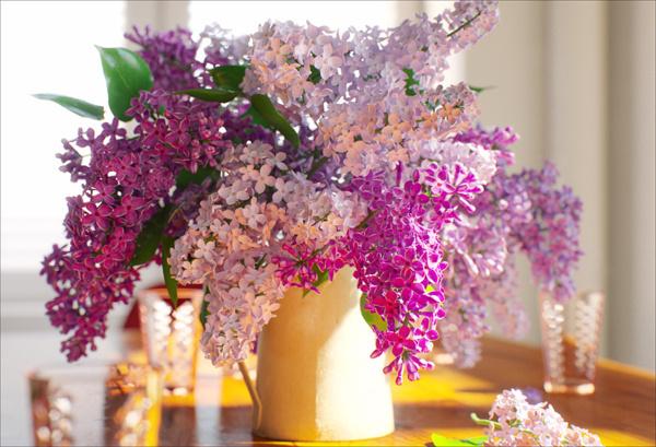 MORPH on Behance #interior #photo #design #decor #photography #architecture #minimal #light #decoration