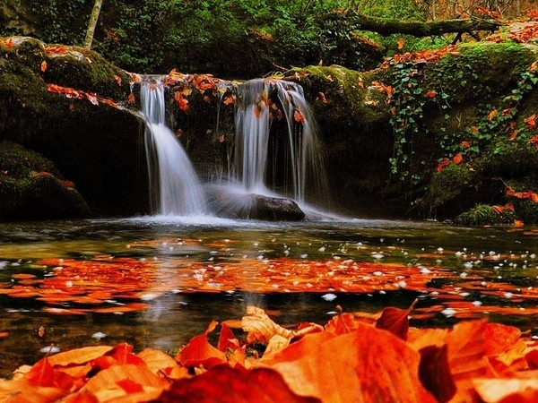 Autumn, waterfall #waterfall