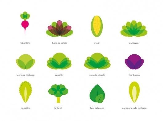 Packs Agromediterránea - flipando en PANTONE #ataz #illustration #andrea #ssalad