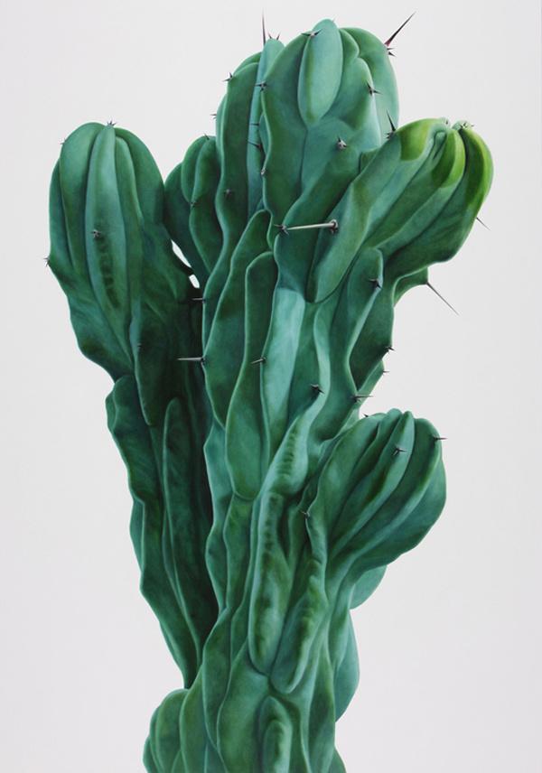 Cactus paintings – Kwang-Ho Lee #cactus #flora