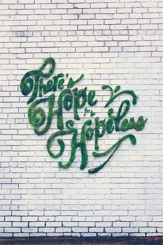 Haily Alice #eco #typography