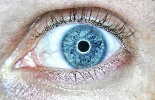 Credits: Nikolaj Bielov PhotographyCreative Commons BY NC ND 3.0 #eye #macro #blue eyes #close up