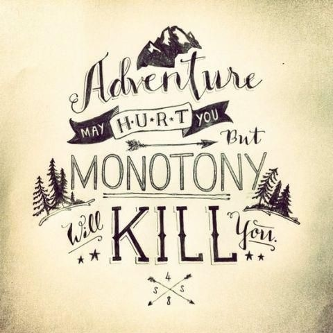 The Bold Academy's Photos #quote #typography