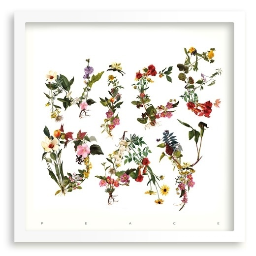 Francesc Moret #type #print #flowers