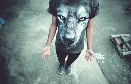 http://25.media.tumblr.com/tumblr_lz44bhZq6p1qcpwebo1_500.jpg #blue #lifestyle #wolf #gray