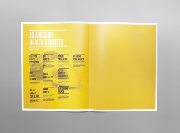 Avocado Zapotlan Brochure #avocado #mexico #mno #editorial #brochure