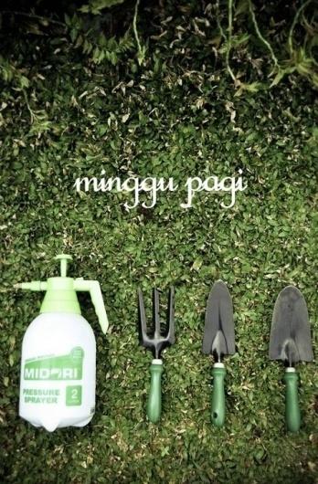 523369_10150743122825980_709525979_9652249_1448560356_n.jpg (474×720) #garden #park