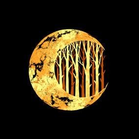 Nature moon #design #space #illustration #nature #art