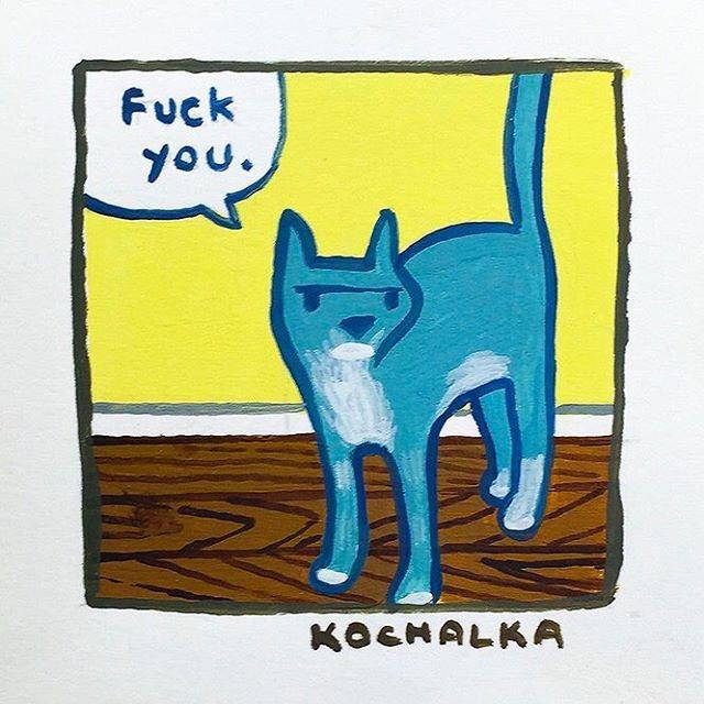 Fuck you by Kochalka #kochalka #cat #illustration #quote #artist #watercolor #design #creed