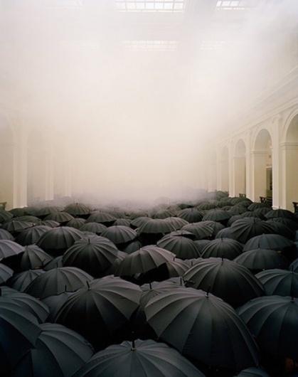'it would be so beautiful if it weren't so terrible.' - decapitate animals #rain #umbrella #photograph
