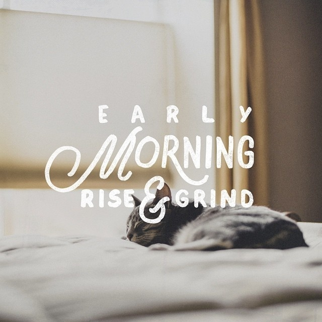 Early Morning Rise & Grind - maybe just a few more zzzZZZzzz #lettering #theboredkids #sleep #mornings #cats #rise #typography