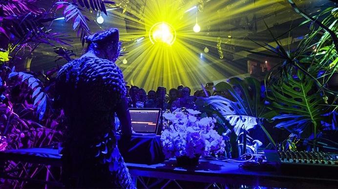 #bjork #dj #music #fashion #light #jungle