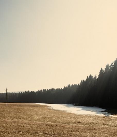 maerz11_07.jpg (JPEG-Grafik, 558x650 Pixel) #sun #jochen #cold #black #photography #forest #pach #winter