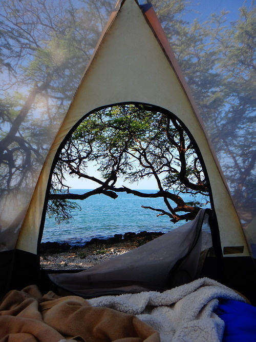 relax #ocean #camping #lake #tent #forest