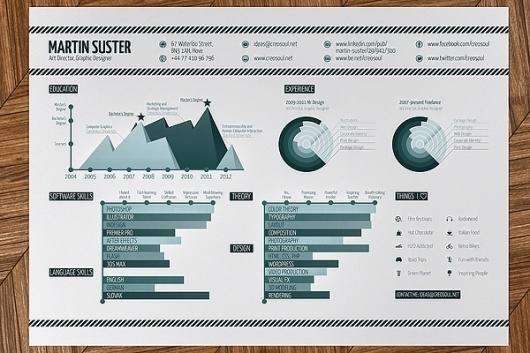 Infographic Resume on the Behance Network