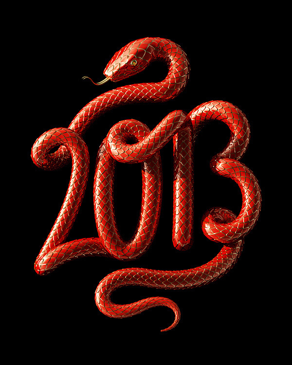 2013 - Year of the Snake #lettering #3d #typography