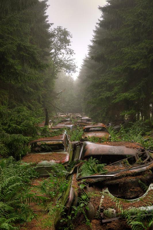 Chatillon (13) | Flickr - Photo Sharing! #cars #decay