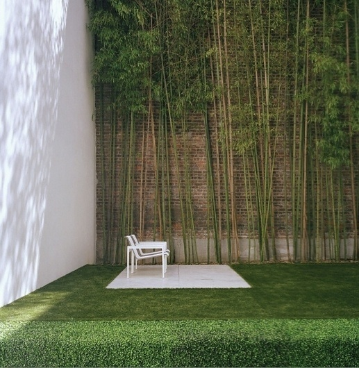 Urban Gardens #garden #courtyard #wall #high