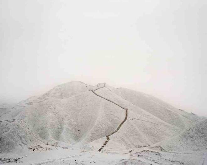 Habitats by Wang Yuanling #inspiration #photography #art