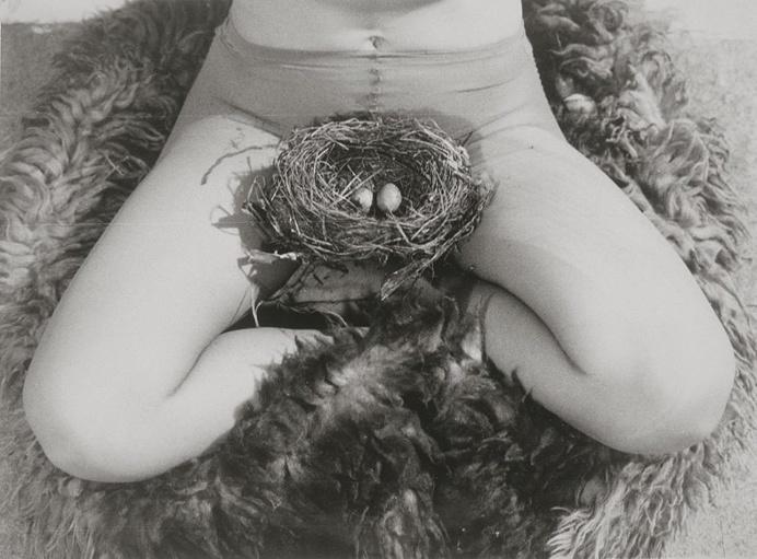"""""""Nest"""", 1979, Birgit Jürgenssen #photography"""