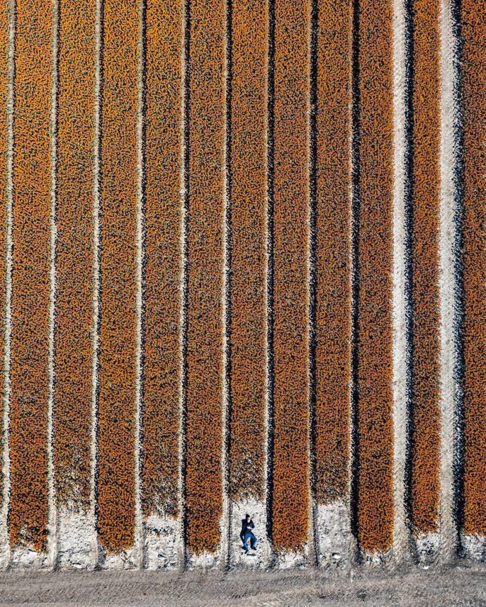 The Netherlands From Above: Drone Photography by Erik Krugers