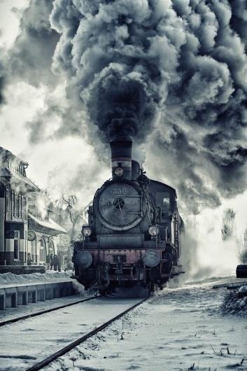 tumblr_lzx8hokhj21qk915bo1_1280.jpg (1280×1920) #train