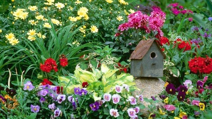 Home Flower Garden #interior #photography #inspiration