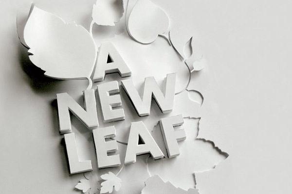 Looks like good Graphic Design by Shaz Madani #leaf #paper #new
