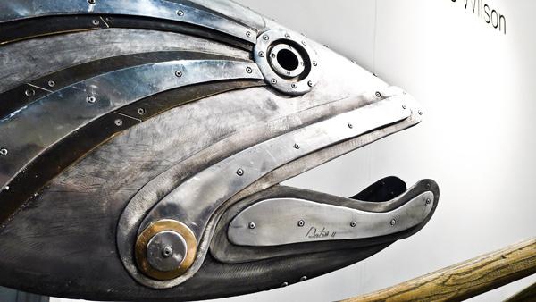 Fish #fish