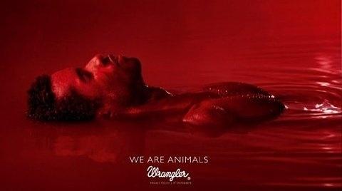 FFFFOUND! | We Are Animals | Fubiz™ #red #wrangler #are #animals #jeans