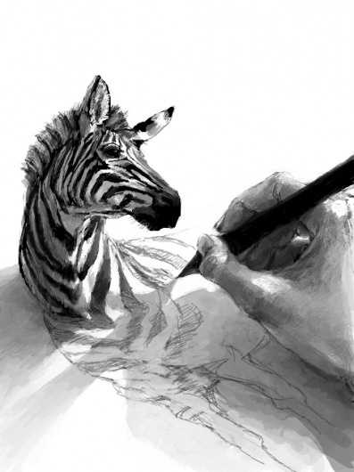 Platypus | 25711 | Wookmark #drawing #zebra
